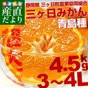 送料無料 静岡県より産地直送 JAみっかび  三ケ日みかん(青島種)大玉 3から4Lサイズ 4.5キロ  ミカン 蜜柑