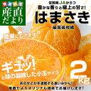 佐賀県より産地直送 JAからつ はまさき 小玉SSサイズ 2キロ (24玉前後)