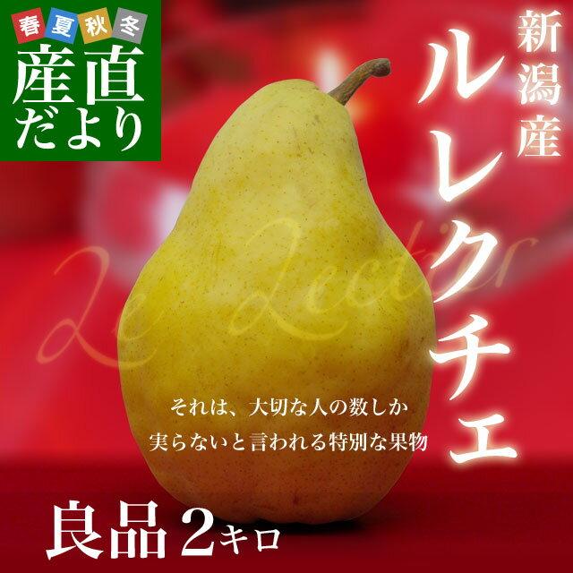 送料無料 新潟県より産地直送 JAにいがた南蒲 ル レクチェ 良品 2キロ(5玉~8玉) 洋ナシ 洋梨 ル・レクチェ