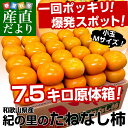 送料無料 和歌山産 JA紀の里たねなし柿 小玉Mサイズ7.5キロ 40玉