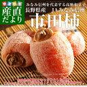 長野県産 JAみなみ信州 市田柿(干し柿) 化粧箱入り 500g(16から18玉入)