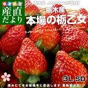 栃木県より産地直送 JAかみつが 栃乙女いちご SD 大粒の3L 約320g×2パック(12から15粒×2P)いちご イチゴ 苺