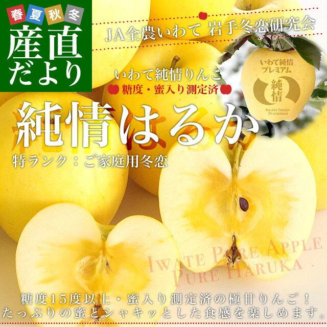 送料無料 岩手県より産地直送 JA全農いわて いわて純情りんご 純情はるか 5キロ ご家庭用冬恋 (16から25玉)