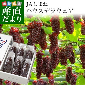 島根県より産地直送 JAしまね ハウスデラウェア 赤秀 Lから2Lサイズ (6房から7房) 1キロ化粧箱入り