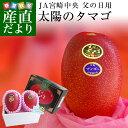 遅れてごめんね父の日ギフト 送料無料 宮崎県より産地直送 JA宮崎中央 完熟マンゴー「太陽のタマゴ」 2L×2玉 …