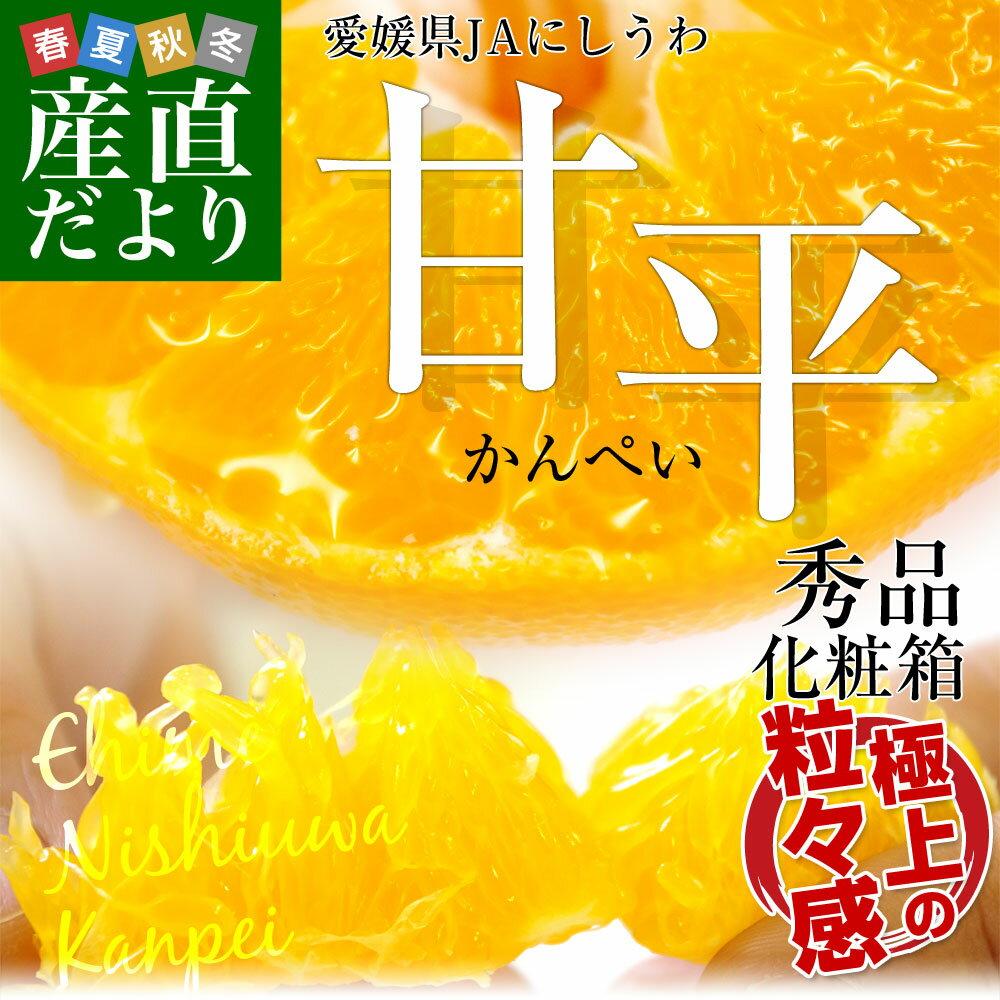 送料無料 愛媛県より産地直送 JAにしうわ 甘平(かんぺい) 秀品 3Lから2Lサイズ 3キロ(10から12玉)