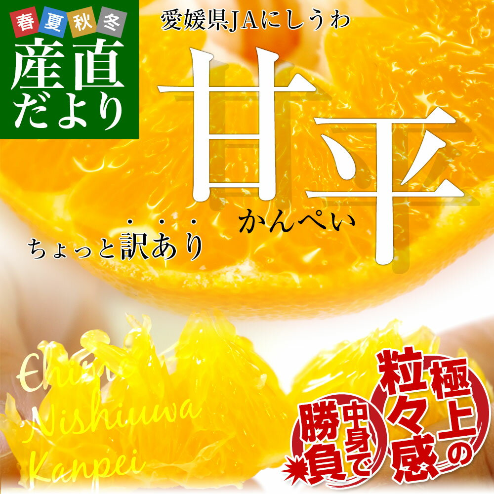 送料無料 愛媛県より産地直送 JAにしうわ 甘平(かんぺい) ちょっと訳あり 3LからLサイズ 3キロ(10から15玉)