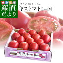 茨城県より産地直送 JAなめがたしおさい フルーツトマト キストマト LからMサイズ 約1キロ(10から16玉)