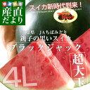 送料無料 千葉県より産地直送 JAちばみどり 銚子の黒皮スイカ ブラックジャック 4L 大玉1玉 約10キロ