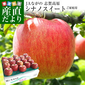 送料無料 長野県より産地直送 JAながの 志賀高原のシナノスイート ご家庭用 約5キロ (12から18玉) 林檎 りんご リンゴ