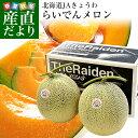 送料無料 北海道産 JAきょうわ らいでんメロン 赤肉 2玉 (1.4キロ前後×2) めろん 市場スポット 夏ギフト2019 …