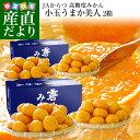 送料無料 佐賀県より産地直送 JAからつ うまか美人  高糖度みかん 小玉 2SからSサイズ 約2キロ×2箱(合計60玉…