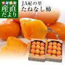 送料無料 和歌山県より産地直送 JA紀の里 たねなし柿 合計4キロ 2キロ×2箱(10玉から12玉入り×2箱) カキ かき…