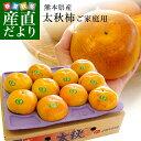 熊本県産 太秋柿 3.5キロ(8玉から14玉) 送料無料 柿 かき