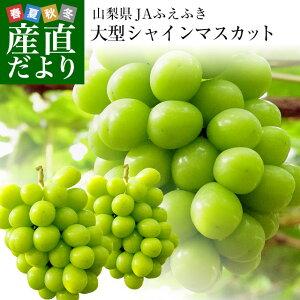 山梨県または長野県産 シャインマスカット1キロ(2房から3房)
