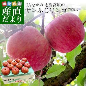 長野県より産地直送 JAながの 志賀高原のサンふじリンゴ ご家庭用 約5キロ (10玉から14玉) 送料無料 林檎 りんご リンゴ