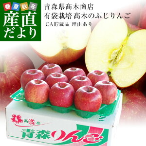 青森県より産地直送 高木商店 マルタカブランド 高木のふじりんご CA貯蔵品 理由あり 3キロ (9玉から10玉) 送料無料 林檎 リンゴ ※クール便