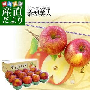 青森県より産地直送 JAつがる弘前 プレミアムサンふじ 葉型美人 (はかたびじん) 3キロ(10玉から13玉) 送料無料 林檎 りんご リンゴ