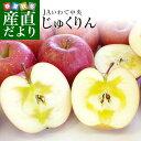 送料無料 岩手県より産地直送 JAいわて中央 完熟サンふじりんご じゅくりん 5キロ(16玉から23玉) 林檎 リンゴ お歳暮 …