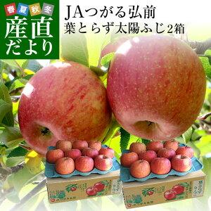 青森県より産地直送 JAつがる弘前 葉とらず太陽ふじりんご 糖度13度以上 約3キロ×2箱(9玉から13玉×2箱) 送料無料 林檎 サンフジ 津軽