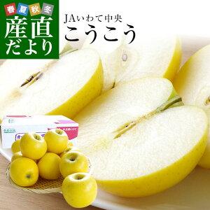 送料無料 岩手県より産地直送 JAいわて中央 こうこう 5キロ (14から20玉) 林檎 りんご リンゴ