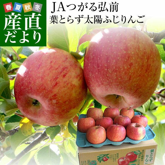 お一人様2箱まで! 送料無料 JAつがる弘前 葉とらず太陽ふじりんご 糖度13度以上 約3キロ(9から13玉) 林檎 りんご リンゴ