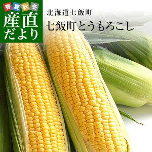 北海道七飯町産 池田さんグループの朝どりトウモロコシ Lサイズ 350g×10本 (ゴールドラッシュ他) とうもろこし ※クール便