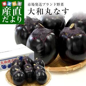 奈良県産 JAならけん 丸なす 約2キロ 秀品9から11玉 送料無料 まるなす 茄子 ナス 市場発送