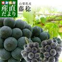 山梨県産 藤稔 (ふじみのり) 1キロ以上(約500g×2房)葡萄 ぶどう 送料無料