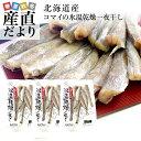 北海道産 コマイ(氷下魚)の氷温乾燥一夜干し 約600g(200g×3袋) 送料無料