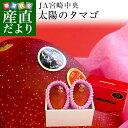 送料無料 宮崎県より産地直送 JA宮崎中央 太陽のタマゴ 最高級AA品 3L×2玉(450gから509g×2玉) マンゴー たいようの…
