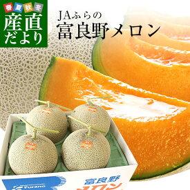 送料無料 北海道産 JAふらの 富良野メロン 4玉 合計約8キロ原体箱 優品以上 ※市場スポット