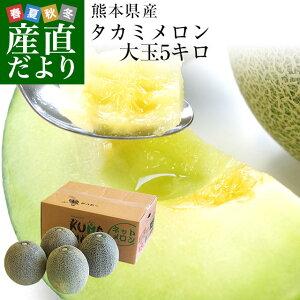 熊本県産 JA熊本市またはJA熊本うき タカミメロン 約5キロ 4Lから3Lサイズ (3玉から4玉) 送料無料 市場スポット