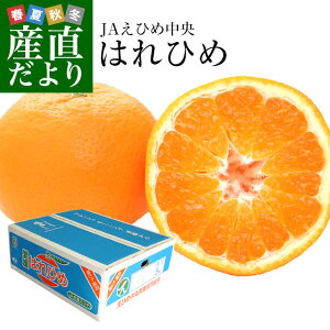 愛媛県より産地直送 JAえひめ中央 はれひめ 2LからLサイズ 約5キロ(28玉から43玉) 送料無料 オレンジ 柑橘類 みかん