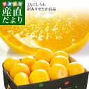 愛媛県より産地直送 JAにしうわ せとか 良品 ちょっと訳あり 3LからLサイズ 3キロ (10玉から15玉) 送料無料 セトカ 西…