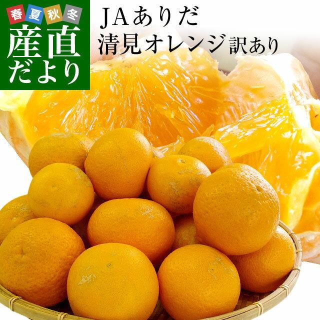 送料無料 和歌山県より産地直送 JAありだマルス共選 清見オレンジ 訳あり 5キロ 3LからM(バラ詰 16玉から30玉) オレンジ おれんじ