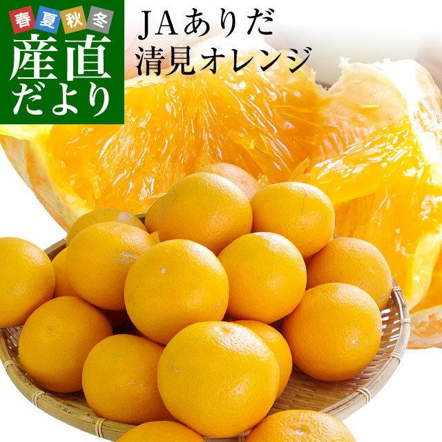 送料無料 和歌山県より産地直送 JAありだマルス共選 清見オレンジ 5キロ 3LからL(優品 16玉から25玉) オレンジ おれんじ