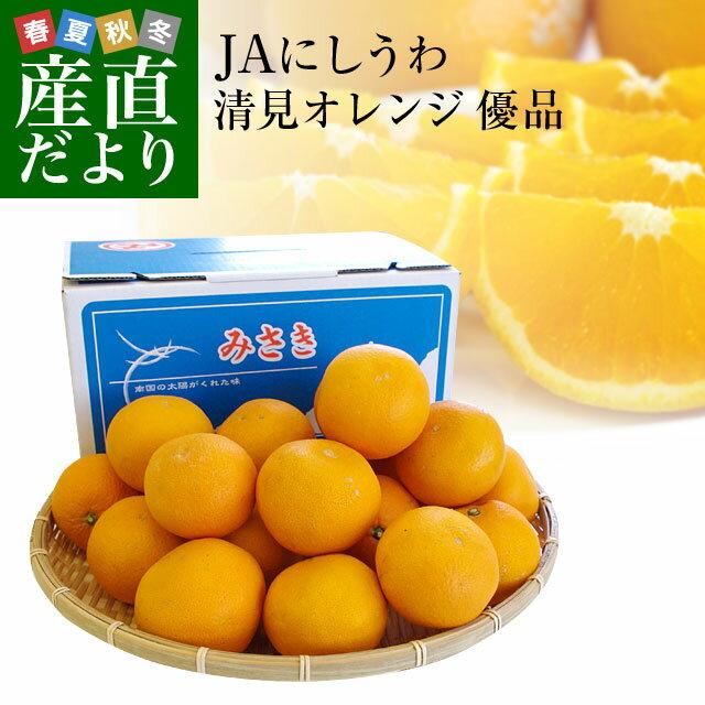 送料無料 愛媛県より産地直送 JAにしうわ三崎共選 清見オレンジ 優品 2LからLサイズ 3キロ(15から20玉前後)
