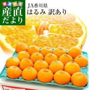 香川県より産地直送 JA香川県 はるみ Mから3L ちょっと訳あり 5キロ(12から28玉前後) 送料無料 柑橘 オレンジ ハルミ