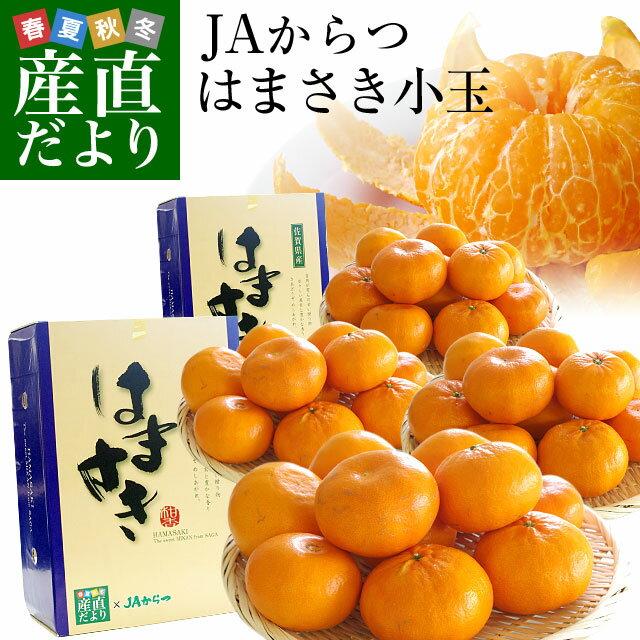 送料無料 佐賀県より産地直送 JAからつ はまさき 小玉SSサイズ 2.5キロ×2箱セット(20から25玉前後×2箱) 浜崎 柑橘 オレンジ