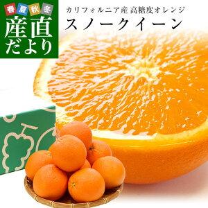 カリフォルニア産 オレンジ「SNOW QUEEN(スノークイーン)」約2キロ(中玉サイズ9玉)送料無料 ネーブルオレンジ バレンシアアレンジ 市場発送