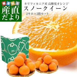カリフォルニア産 オレンジ「SNOW QUEEN(スノークイーン)」2箱セット 約2キロ×2箱(9玉×2)送料無料 ネーブルオレンジ バレンシアアレンジ 市場発送