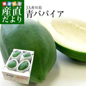 送料無料 香川県より産地直送 JA香川県 青パパイア 1.5キロ(3玉から6玉) 青パパイヤ