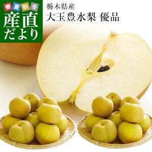 栃木産 豊水梨 大玉10キロ 優品(20玉から28玉)送料無料 なし ナシ 和梨