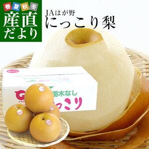 送料無料 栃木県より産地直送 JAはが野 にっこり梨 大玉 5キロ (4玉から5玉) 優品以上 なし ナシ