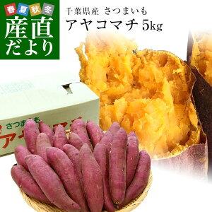 千葉県産 JAかとり アヤコマチ Mサイズ5キロ 20本前後 送料無料 さつまいも サツマイモ 薩摩芋 にんじん芋 オレンジ芋 野菜 市場発送