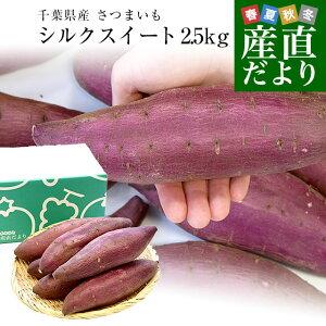 千葉県産 JAかとり シルクスイート Lサイズ2.5キロ 7本前後 送料無料 さつまいも サツマイモ 薩摩芋 新芋 市場発送