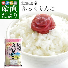 平成30年産 北海道産 ふっくりんこ 5キロ お米 北海道米