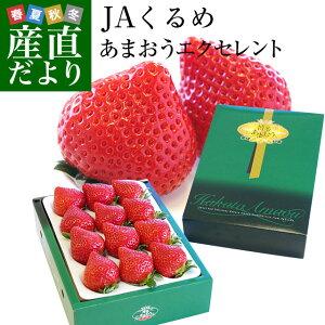 送料無料 福岡県より産地直送 JAくるめ あまおういちご EX:最上級品エクセレント 420g(12粒から15粒) 苺 いちご イチゴ ストロベリー