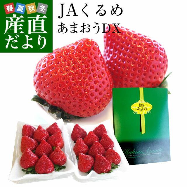 送料無料 福岡県より産地直送 JAくるめ あまおういちご DX:ギフト用デラックス 約540g(270g×2パック) 苺 いちご イチゴストロベリー